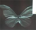 エバ・ジャパンの高速・高分解能分光カメラ