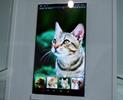 ジャパンディスプレイが開発する,スマホ向け超高精細WQHD(1440×2560)ディスプレイ